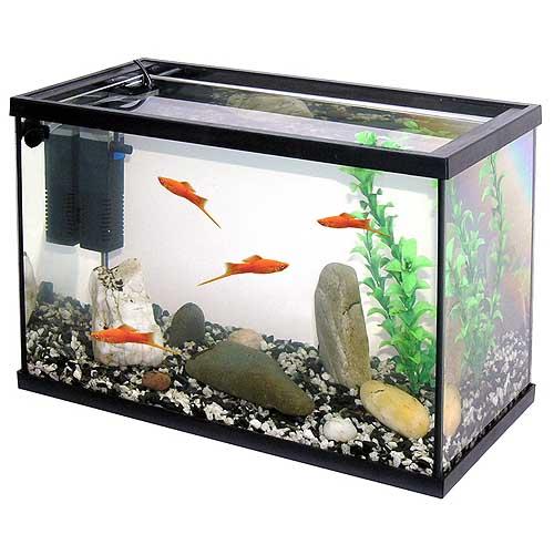 PACIFIC-40 akvárium 20l 40x20x25cm krycí sklo+filtr+štěrk+umělá rostlina