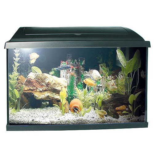 PACIFIC-50 akvárium 37,5l s výbavou 50x25x30cm 1x15W Eco