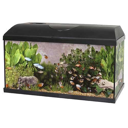 PACIFIC-60 akvárium 54l 60x30x30 s výbavou 1x15W Eco