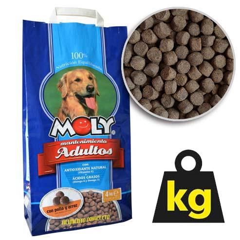 MOLY MAINTENANCE 24/10 4kg krmivo pro dopělé psy