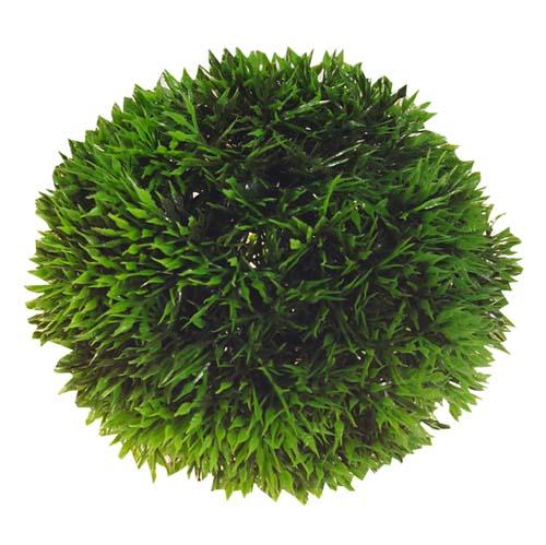 Rastlina umelá Plant Ball 13cm